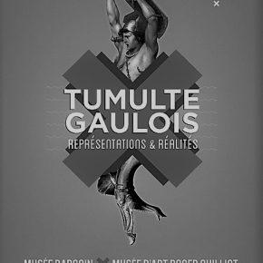 """[PROJETS MUSÉOCOM] Enquête de publics autour de """"Tumulte Gaulois"""""""